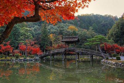 Concetti di architettura giapponese giardini for Architettura giapponese tradizionale